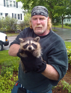 Rich, one of our technicians, with a baby raccoon clients one our clients chimneys home